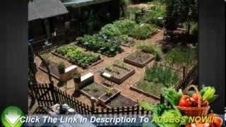 Vegetable Gardening For Beginners - 6 Easy Tips To Start You Off