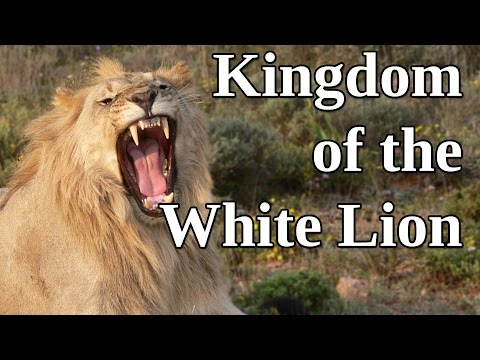 Kingdom Of The White Lion: A Man and His Passion for Wild Animals