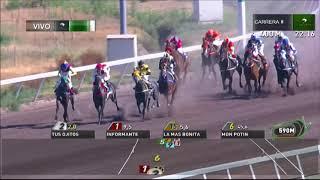 Vidéo de la course PMU PREMIO VIVERO