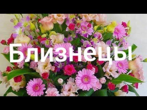 Близнецы Таро-гороскоп с 18.03 по 24.03 2019 г.