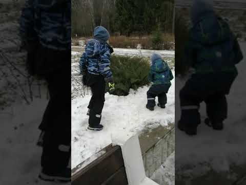 10 января 2020 год прогулка с детьми  #ЕкатеринаГуменюк