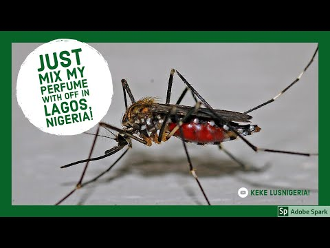 OFF  Mosquito repellent 💯💯 don't travel to Lagos , Nigeria without it! Travel Vblog