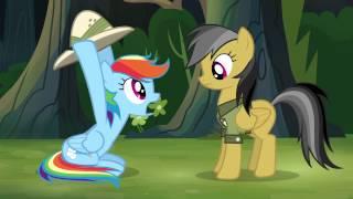 Rainbow Dash (holding pith helmet) ~ Stop!