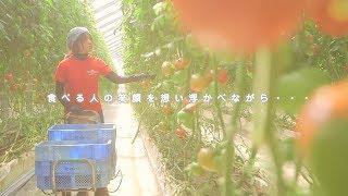 モスバーガー公式YouTubeチャンネル☆ モスバーガーで使用される生野菜は...