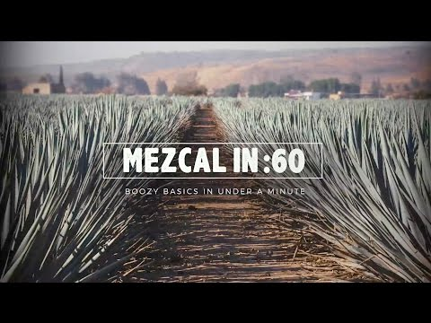 Mezcal in :60 - Liquor.com