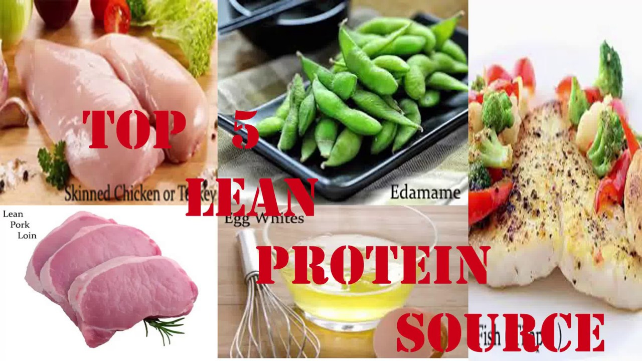 Top 5 Lean Protein Food Youtube