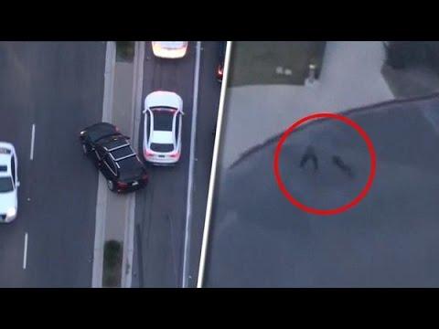 Download Spectaculaire actie politiehond na achtervolging