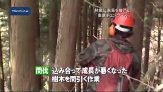 若者が檜原で起業 林業に未来を賭ける