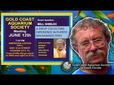 Gold Coast Aquarium Society June 12 2019