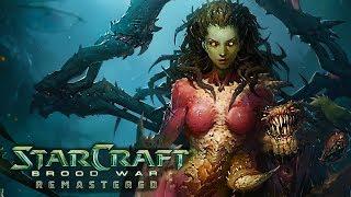 StarCraft: Brood War Remasterizado - Pelicula Completa en Español 2017 [1080p 60fps]