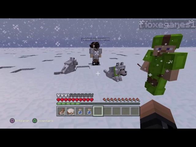 minecraft - FILM - perdu dans la neige