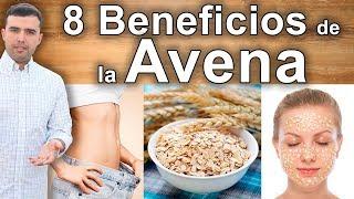 8 beneficios y propiedades de comer avena todos los das adelgazar salud y belleza
