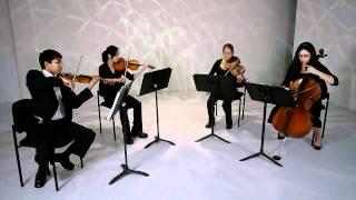 Pachelbel Canon in D | Baby B Strings
