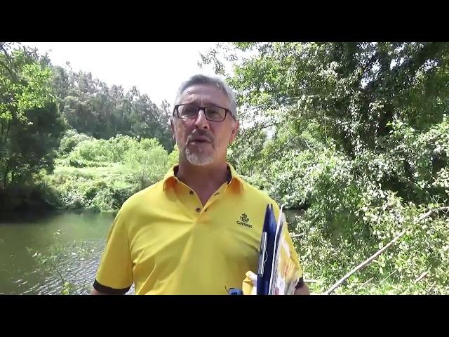 Consejos del Cartero: Qué hacer en Caldas de Reis | Camino Portugués