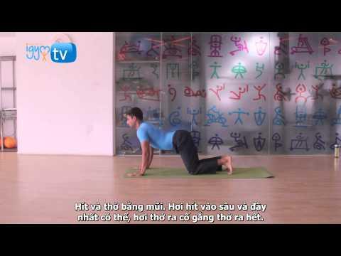 I - Yoga: Tư thế Chào mặt trời