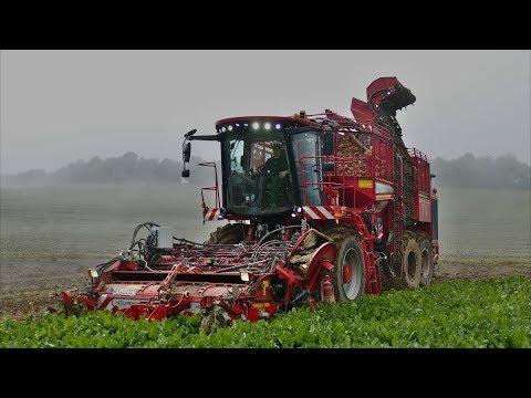 Holmer Terra Dos T4 | Zuckerrübenernte | Agrarservice Heller