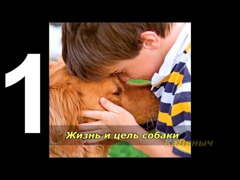 Караоке ► Русские Песни ♫ Скворец ♫ Karaokeиз YouTube · Длительность: 3 мин57 с