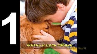 Жизнь и цель собаки | Брюс Кэмерон  1 из 7