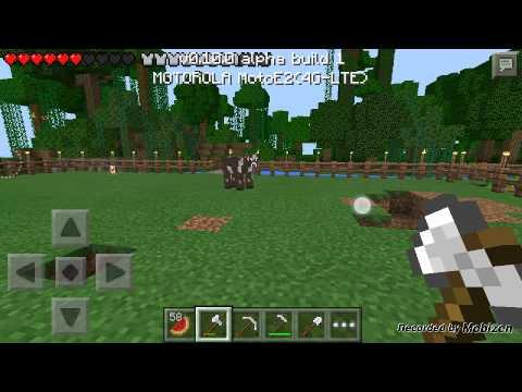 Minecraft rgj