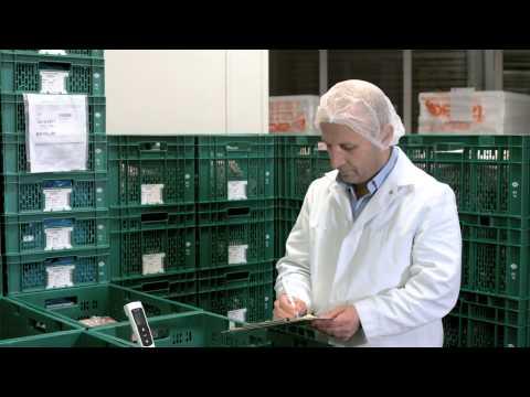 Birlik Döner Produktion GmbH Italienisch ( 2013 © Studio Online GmbH )