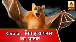 केरल: चमगादड़ से फैलने वाले 'निपाह वायरस' का आतंक, 6 लोगों की गई जान | ABP News Hindi