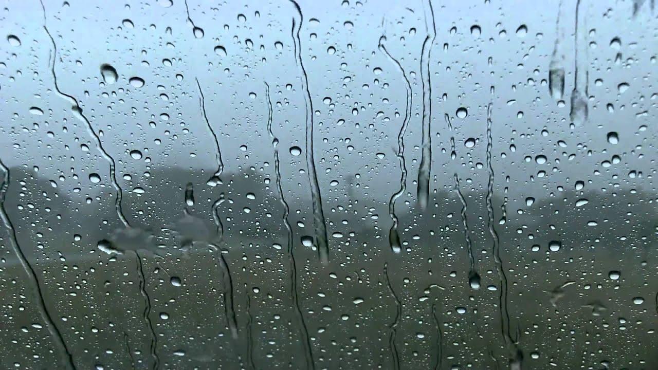 гиф картинка капли дождя представитель равнинных