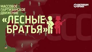 видео Лесные братья. Как украинцы по безвизу ягоды в Швеции собирают
