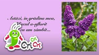 Repeat youtube video Cantecele de copii - Flori de primavara