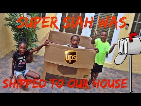 Super Siah Was Shipped To Our House!! It Worked We Had So Much Fun