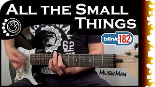 ALL THE SMALL THINGS 🎸 - Blink-182 / GUITAR Cover / MusikMan #108