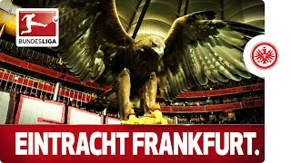 ► sub now: http://redirect.bundesliga.com/_bwbddescription: attila the eagle is symbol and living-breathing mascot of eintracht frankfurt. find out how t...