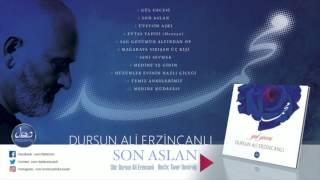 Dursun Ali Erzincanlı - Son Aslan