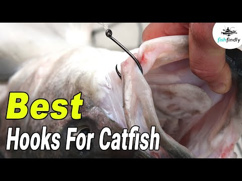Best Hooks For Catfish In 2020 – Catch The Catfish More Easily!