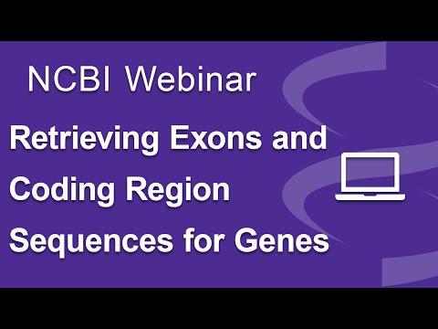 Webinar: Retrieving Exon and Coding Region Sequences for Genes