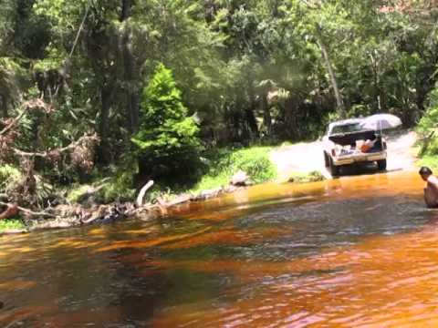 SWIMMING HOLE, NEW PORT RICHEY, FL JUMPERS