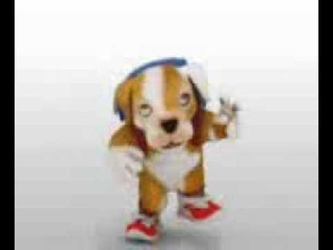 gratis el video del perro chacarron