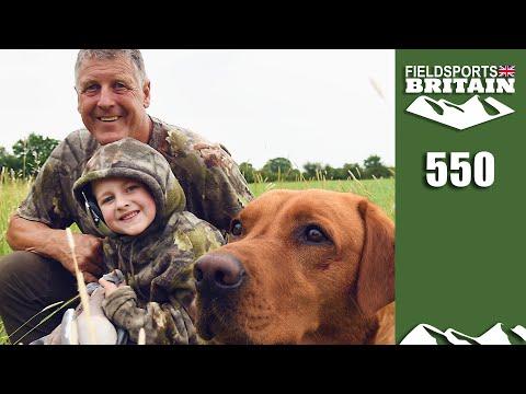 Fieldsports Britain - Crow Hits The Pigeons Hitting The Peas