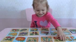 Развивающие занятия 2-5 лет. Изучаем фрукты и овощи играя в лото