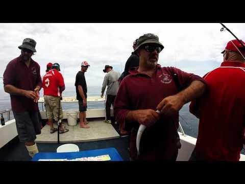 Balgowan Fishing  Charter