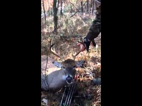 Suffolk county 8pt down!! (After shot)