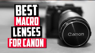 Best Macro Lens For Canon in 2…
