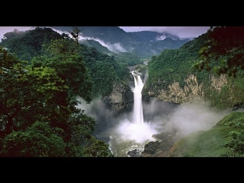 Amazon Rainforest - One of New 7 Wonders of Nature