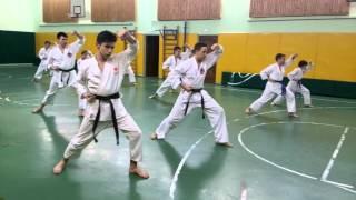 Тренировки по карате. Уроки карате Шотокан | Дзаншин