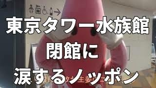 9朁E0日で閉館する東京タワー水族館です、地味化も知れませんが淡水魚�E...