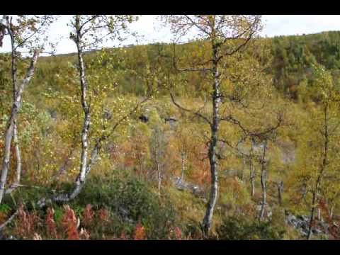 Mosjoen, Norway Along Highway E-6 - Windy Fall Mountain Day - 09/14/2010
