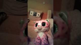 Кот Вишенка на ютуб( кот с большими глазами)