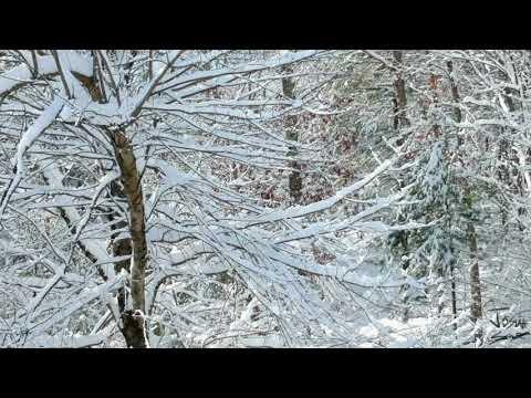 Aerial Footage || West Simsbury, CT || Post Snowstorm || 12.3.2019