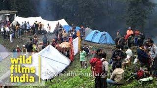 Makeshift township en route Homkund - Nanda Devi Raj Jat Yatra