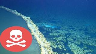 Hồ Dưới Lòng Đại Dương Giết Bất Kỳ Thứ Gì Lạc Vào Trong Đó | Khoa Học Huyền Bí