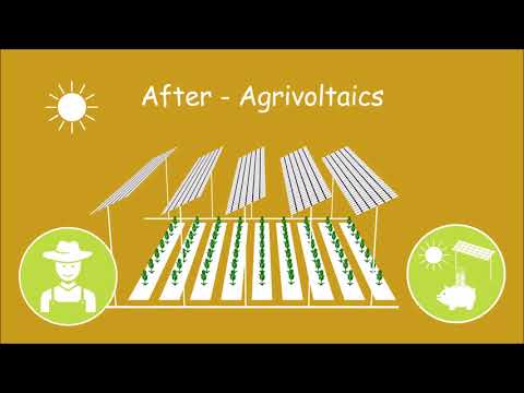 Agrivoltaic Microsolutions